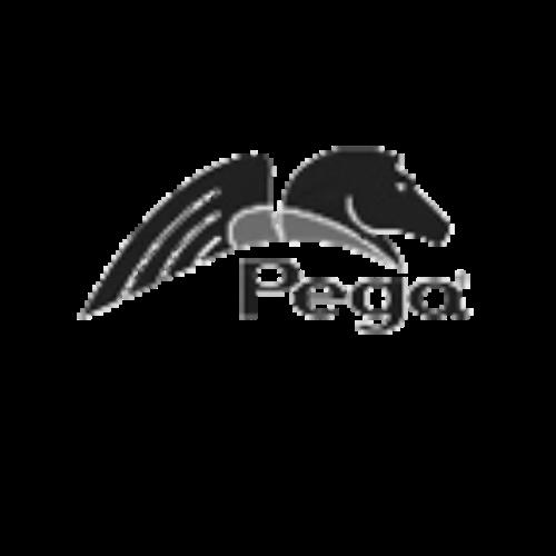 pega.png